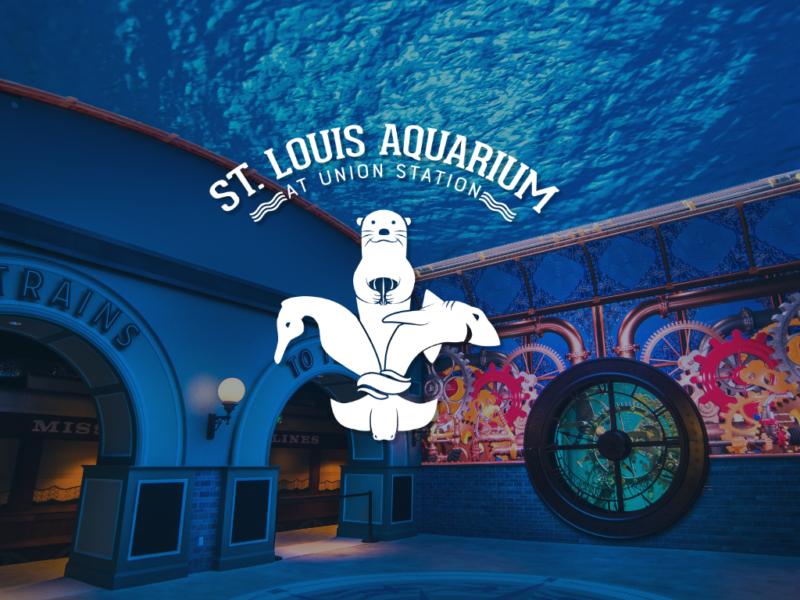 St. Louis Aquariumismakingasplash