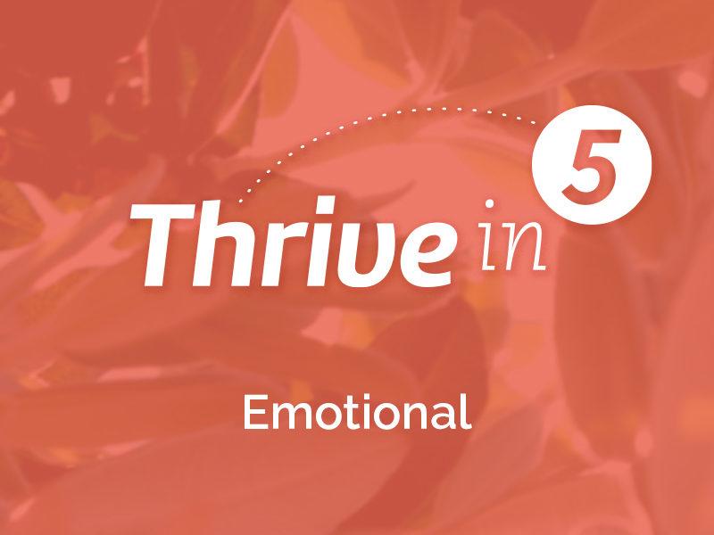 Thrive In 5:  Emotional-Holiday Season Preparation