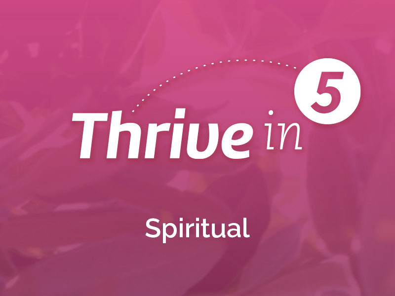 Thrive In 5:  Spiritual – From Solitude to Community to Ministry