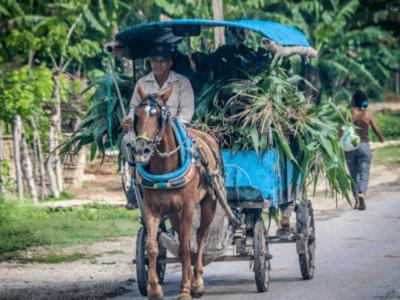 Cuba's Discipleship Model is a Home Run