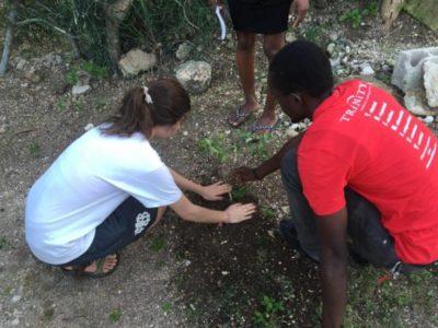 Planting trees of hope in Haiti