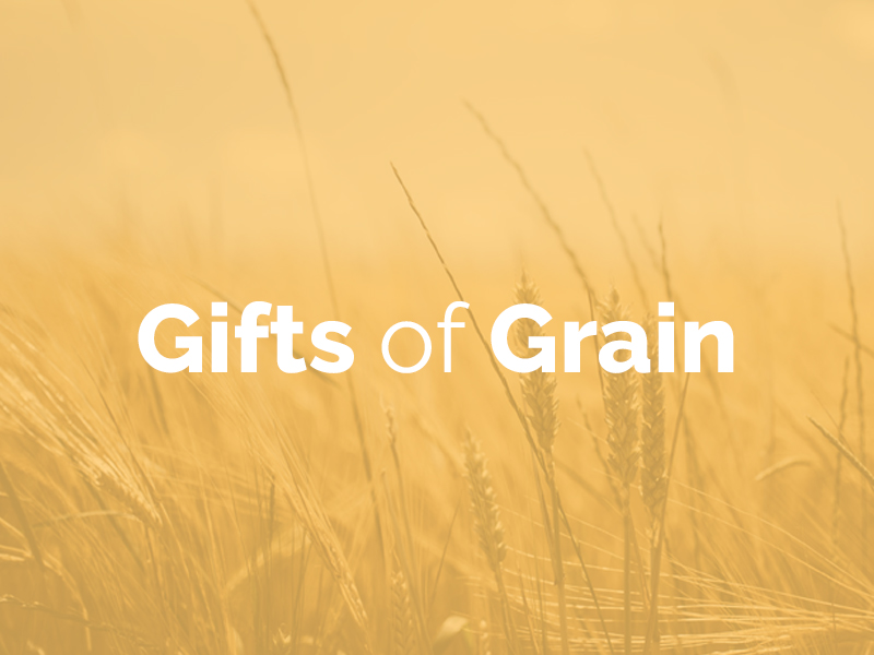 Gifts of Grain