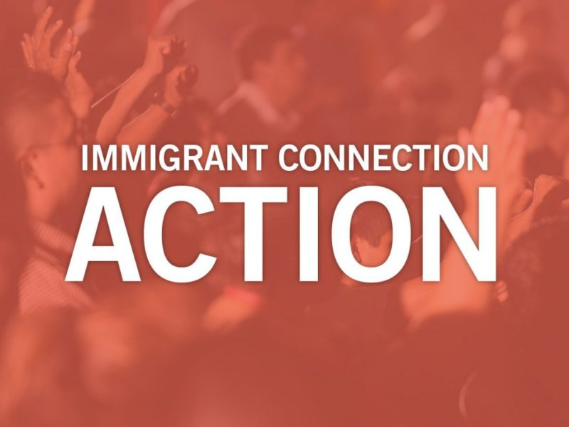 Immigrant Connection – Action