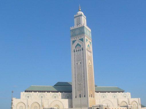 Muslim experiences peace through God's Word