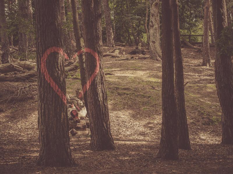 A stony heart
